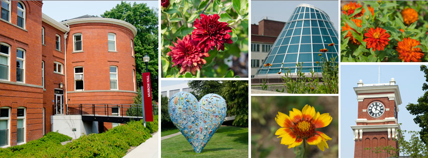 Image grid with photos from the WSU campus for a Facebook cover photo.